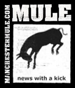 mule-logo-1
